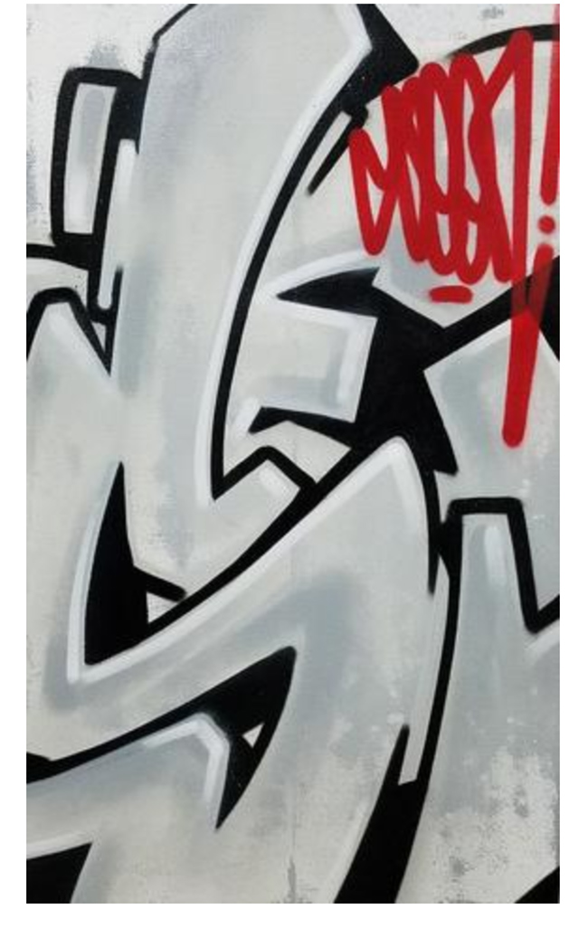 """Wild Style Series"" riginal canvas from SEEN"